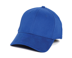baseball hat covert camera
